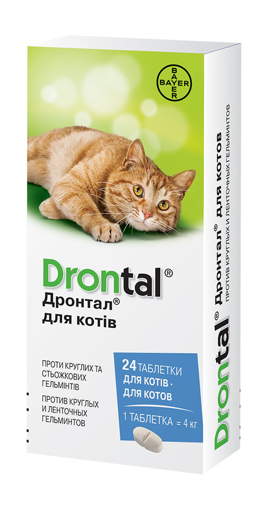 Drontal Cat Big