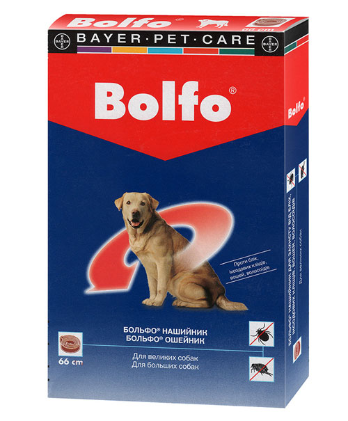 Large Bolfo Osheunik For Big Dog
